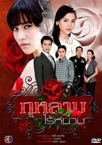 Kularb Rai Narm - Hoa hồng có gai