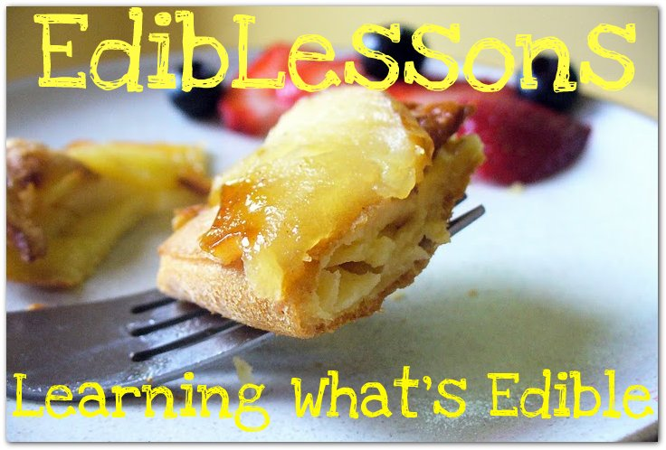 EdibLessons: Learning What's Edible