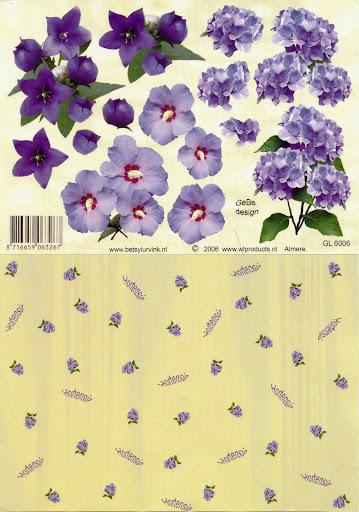 GL 6006 Betsy Lurvink-bloemen+achtergrond.jpg
