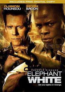 Điệp Vụ Voi Trắng - Elephant White poster