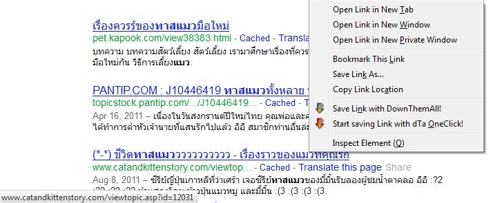 หลังติดตั้ง: ที่มุมซ้ายล่างเราจะเห็น url จริงๆ ของเว็บนั้นที่เราสามารถคัดลอกได้โดยตรง