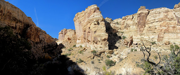 Panorama of the canyon and cliffs above it