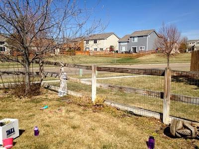 BEFORE: backyard makeover www.thebrighterwriter.blogspot.com