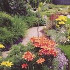 Thumbnail image for Landscape Value!!!