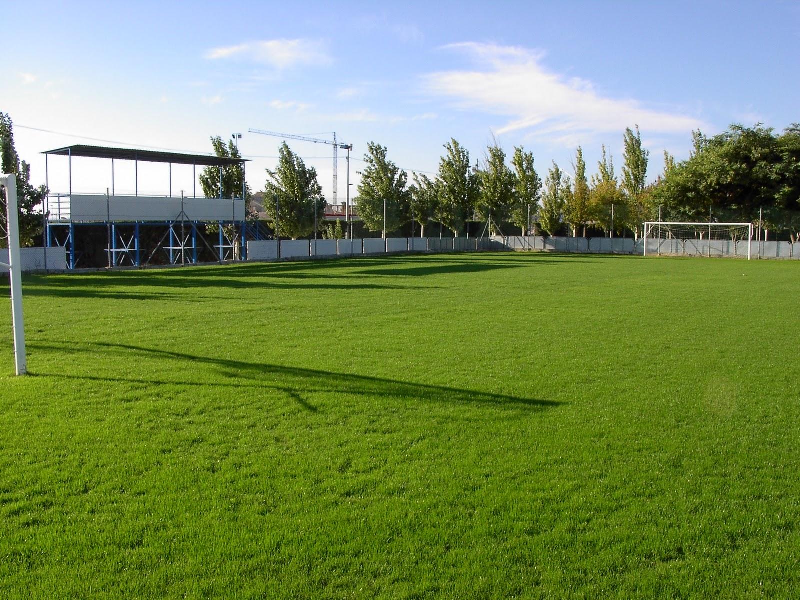 Instalaciones campo de f tbol 7 c sped natural - Cesped natural ...