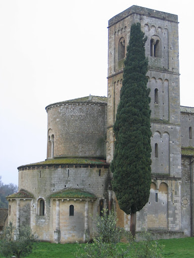 The famous cypress tree competing with the bell tower at Sant'Antimo abbey