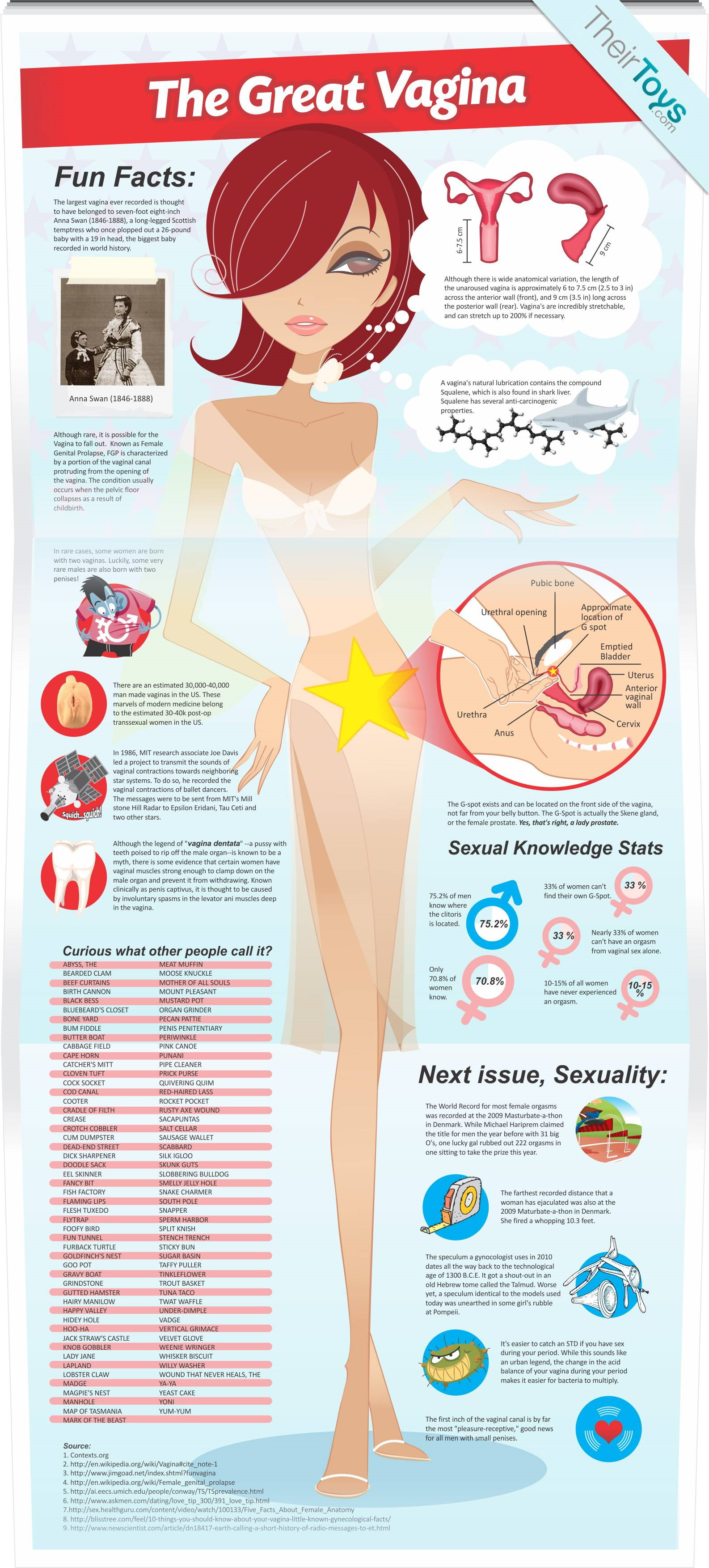 The Great Vagina, An Infographic