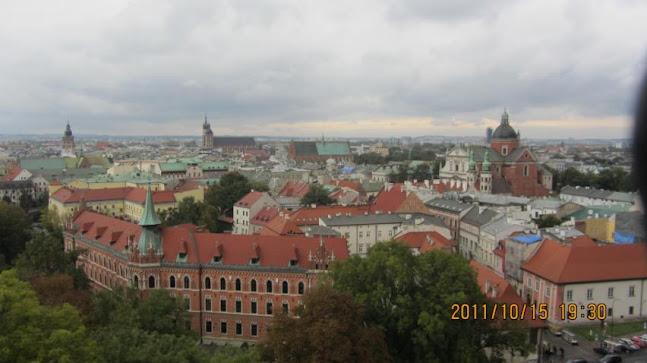 在Wawel城堡俯瞰克拉克夫舊城