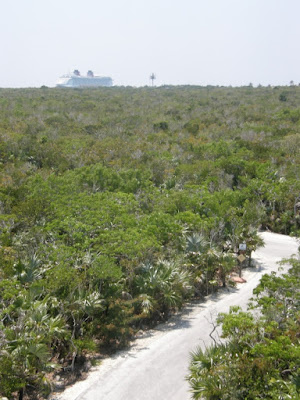 [Floride 2011 - Trip Report] WDW,DCL,USO,IOA,KSC,DC,BG,SW,ETC ... - Page 7 P5100045