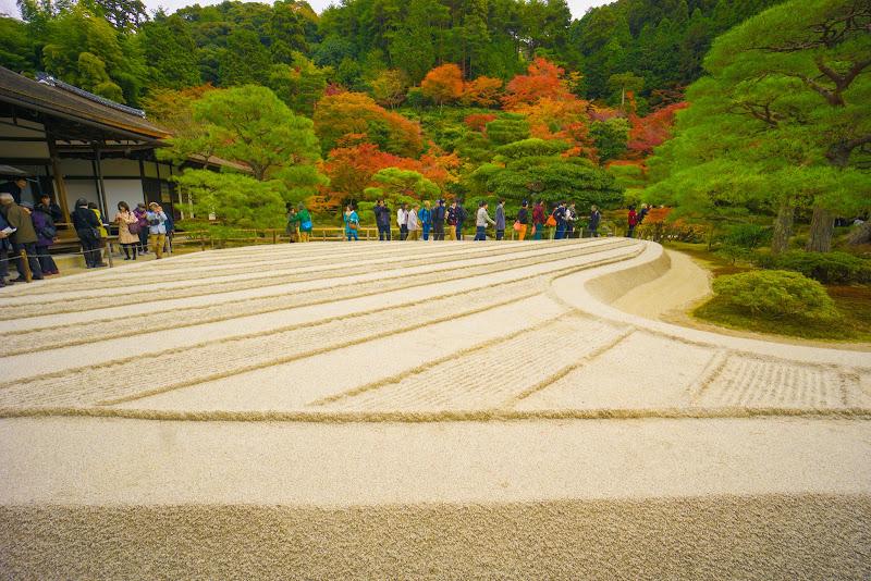 京都 銀閣寺 紅葉 写真4