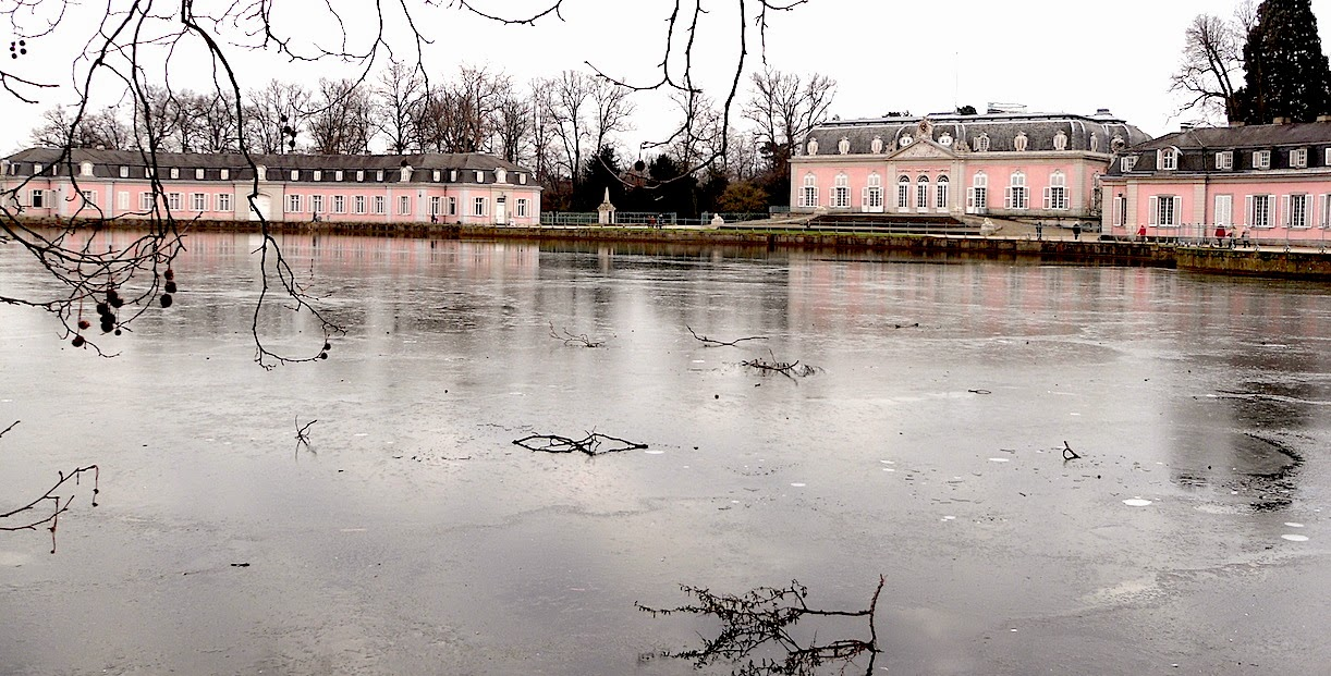 21 января 2015 года, Германия, Дюссельдорф-Бенрат. Свободное изображение сайтап ПАЛОМНИК, автор Алексей Потупин.