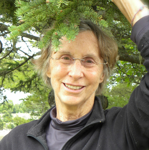 Norton Mark Hintz Obituary   Star Tribune Gail Norton