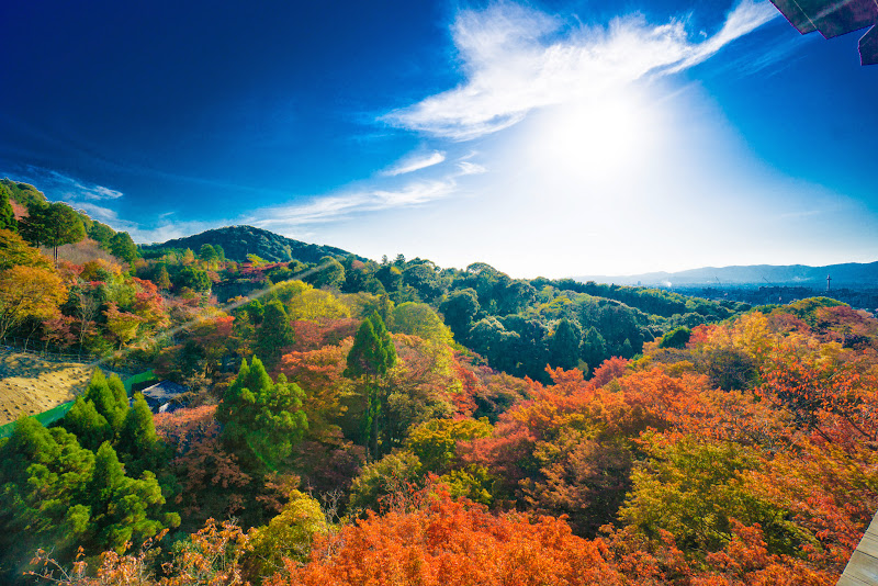 京都 紅葉 清水寺 写真4