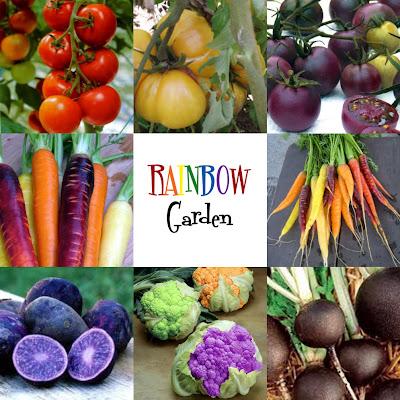 rainbow6 1 Rainbow Kid Garden