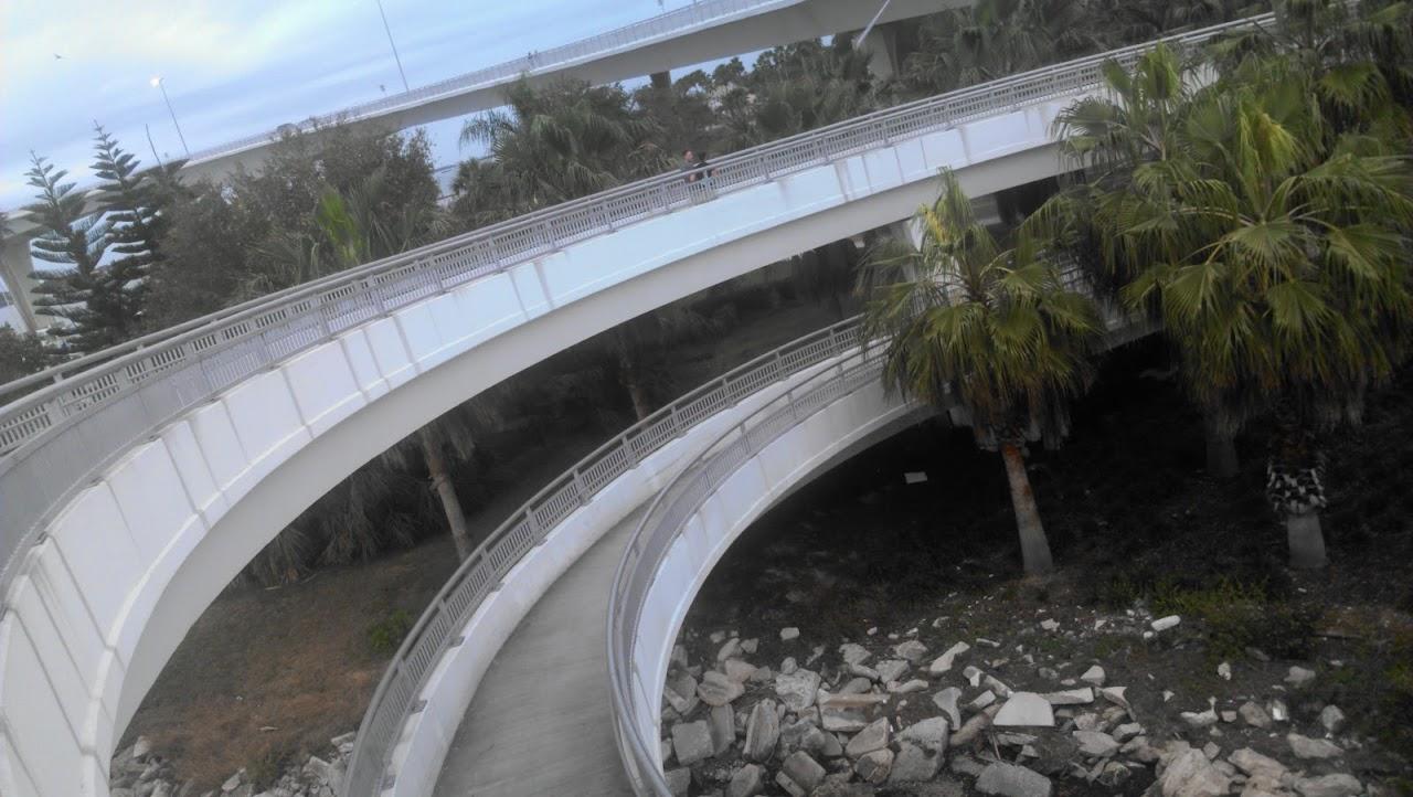 IMAG0081 Clearwater Marathon Recap