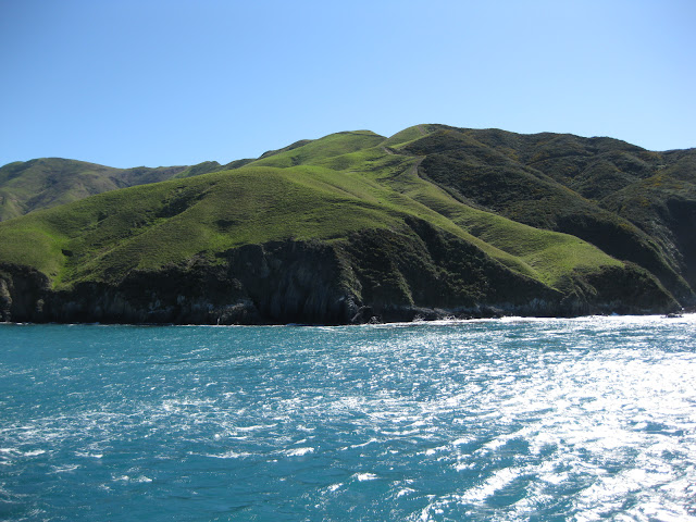 View onto the Marlborough Sounds from the Interislander ferry