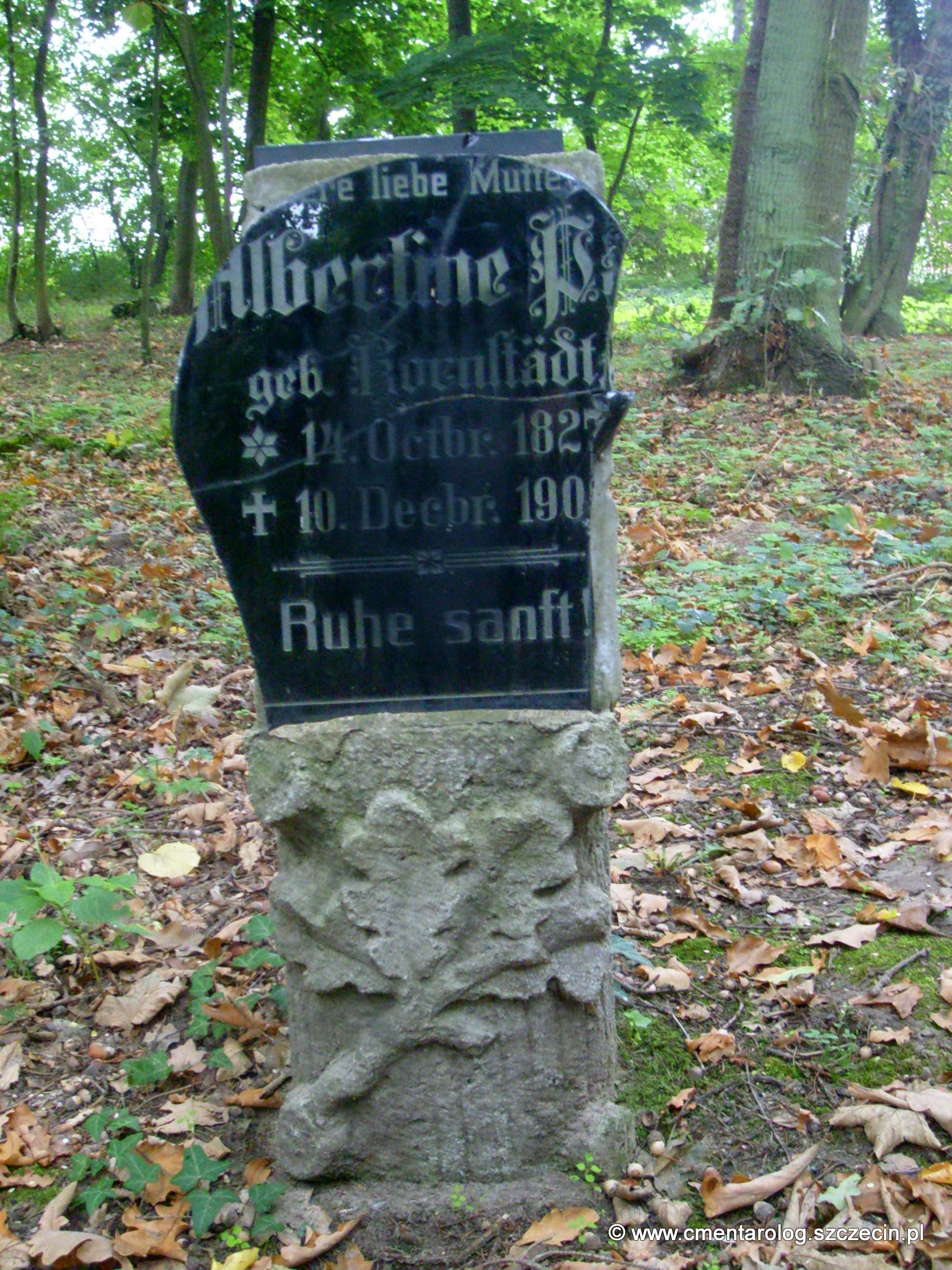 Nagrobek Albertine P.?? (fot. Agata Freindorf, 2009)