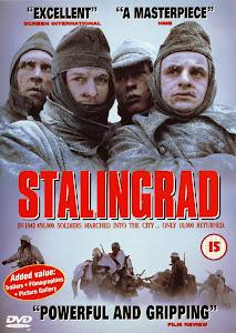 Trận Chiến Stalingrad - Stalingrad poster