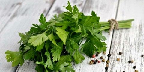 sayur seledri