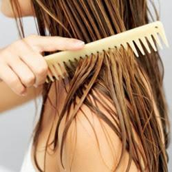 Ароматное расчесывание волос изоражения