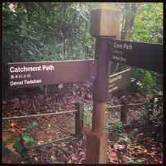 Junction Cave Path and Catchment path