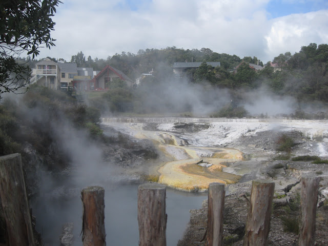 Another hot pool in the village, at Whakarewarewa