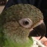 Eviva Barr's avatar