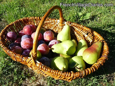 French Village Diaries Home grown fruit plums pears orchard
