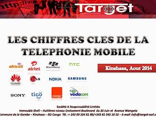 Logo d'un rapport publié en août 2014 à Kinshasa par l'institut de sondage Target.