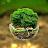 MANOJ GHUGE avatar image
