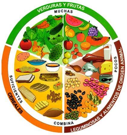 Nutricion importante