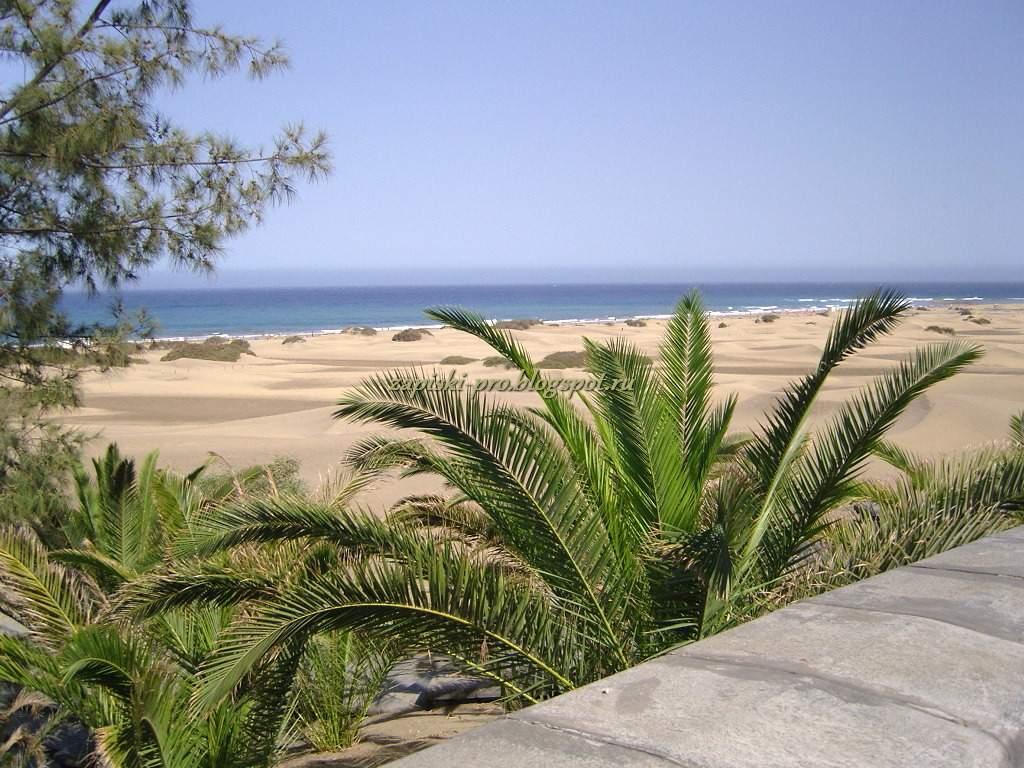Природа острова Гран Канария - первое впечатление
