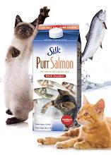Silk Purr Salmon