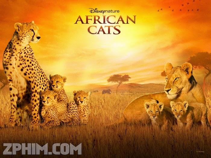 Ảnh trong phim Báo Châu Phi - African Cats 1
