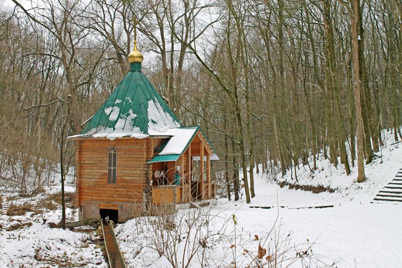 монастырский лес