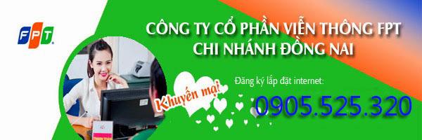 Đăng Ký Lắp Đặt Internet FPT Tại Đồng Nai