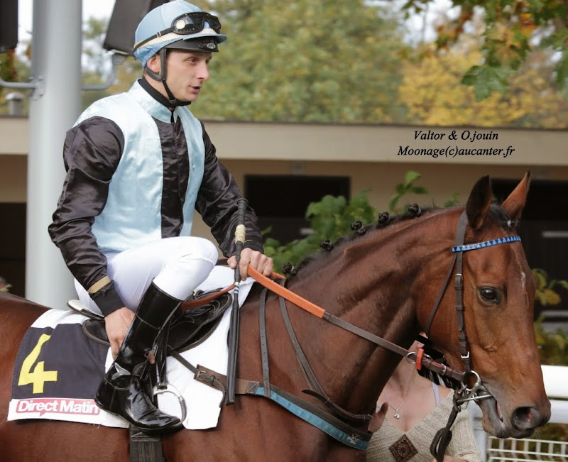 Photos Auteuil 2-11-2014 (48h de l'obstacle) IMG_5255