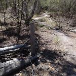 Old farm fence post (104458)