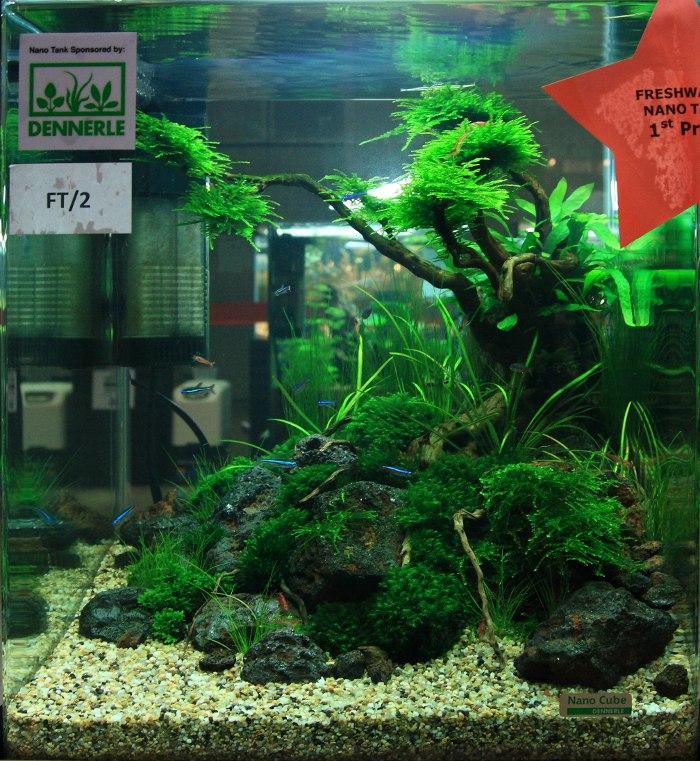 ... Aquarama 2011 nano tank competition result AquaScaping World Forum