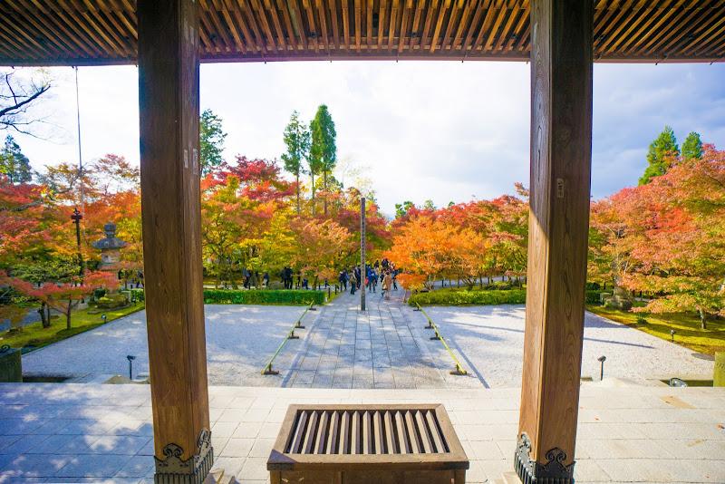 京都 永観堂 紅葉 写真6