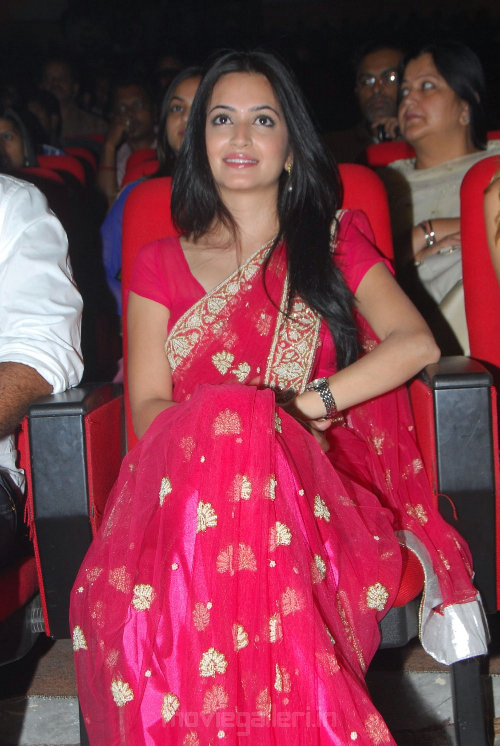 Kriti Kharbanda  Theen Maar Audio Launch Photo Gallery