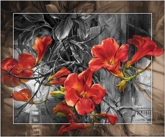 bloemen88.jpg