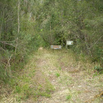 Merging point of Little Digger Servicetrail and Bushtrack (22137)