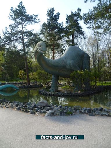 Любимые места в Новосибирском зоопарке