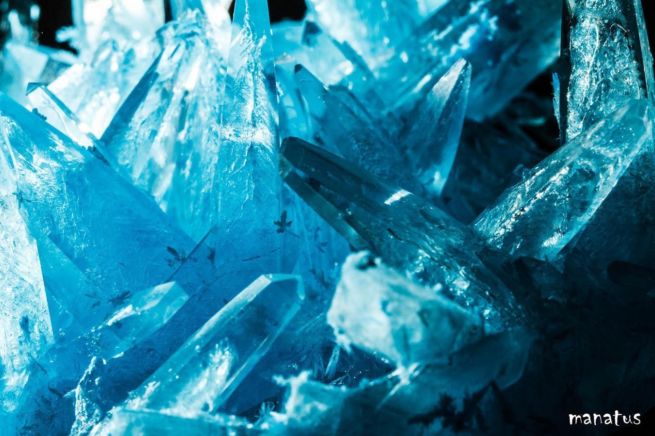 manatus cristal