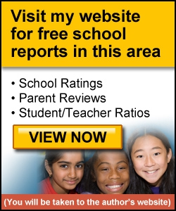 Campo Verde High School School Report