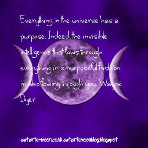 Everything In The Universe Has A Purpose Wayne Dyer Inspirational Manifestation Quote