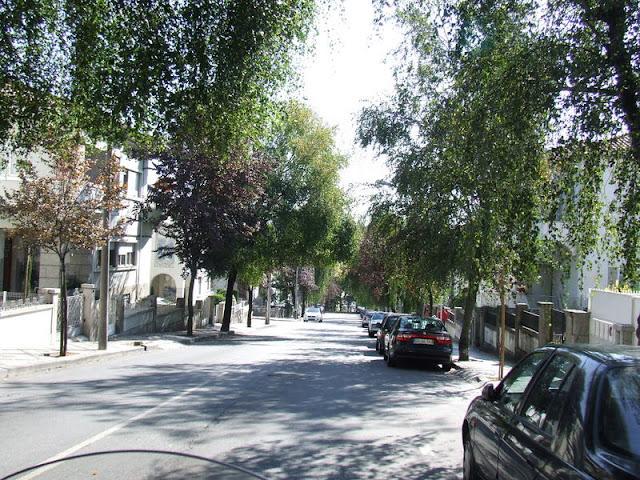 Fomos comprar umas capas para guardar folhas... 25.09.2011 DSCF2433