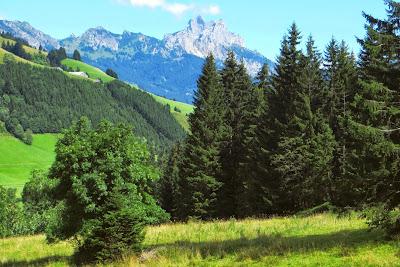 nahe Parkplatz Wannenjochbahn Schattwald BlickTannheimer Gruppe Gimpel Tirol
