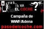 pasodelcoche.com